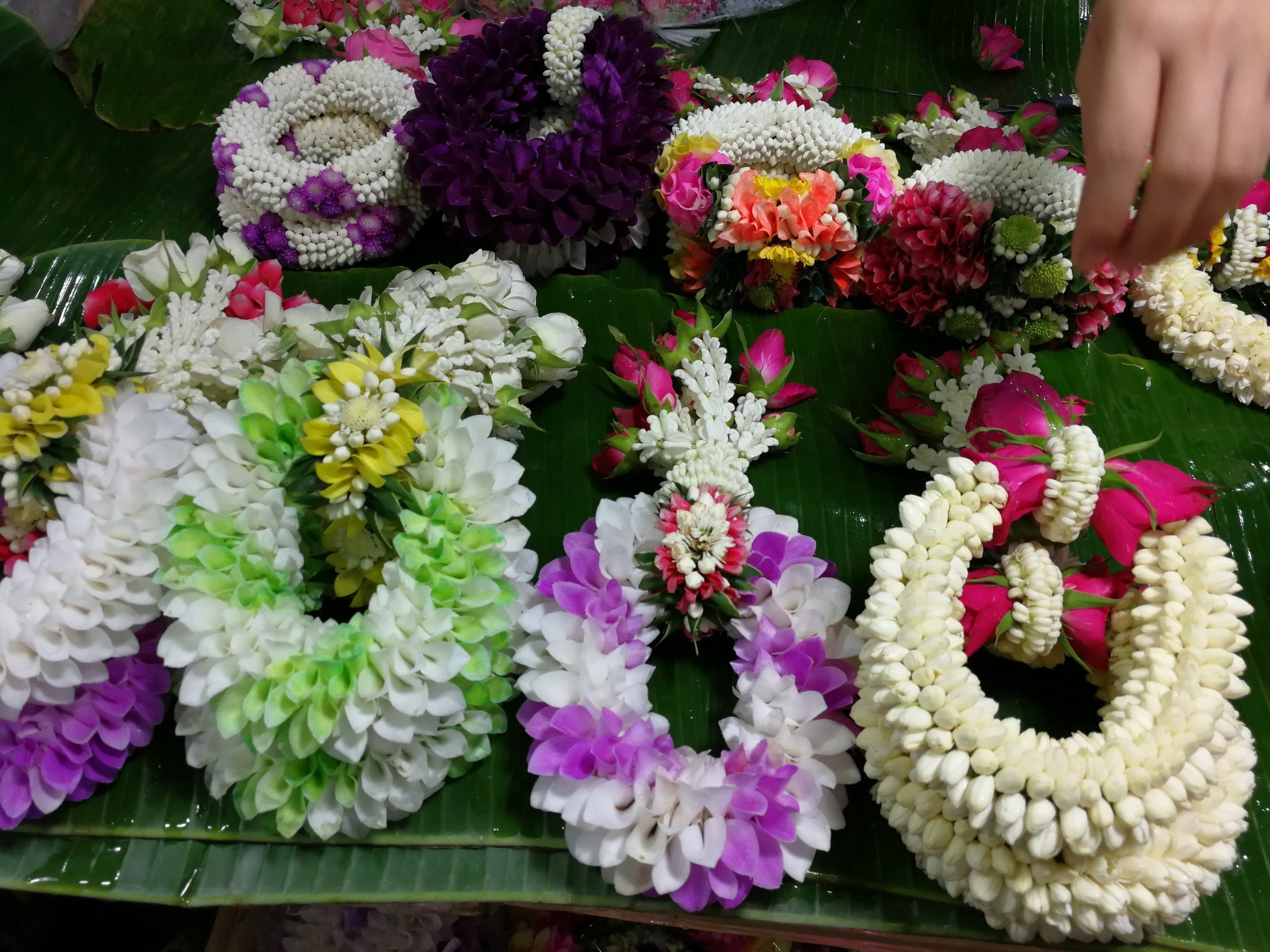 flower_bangkok (9)