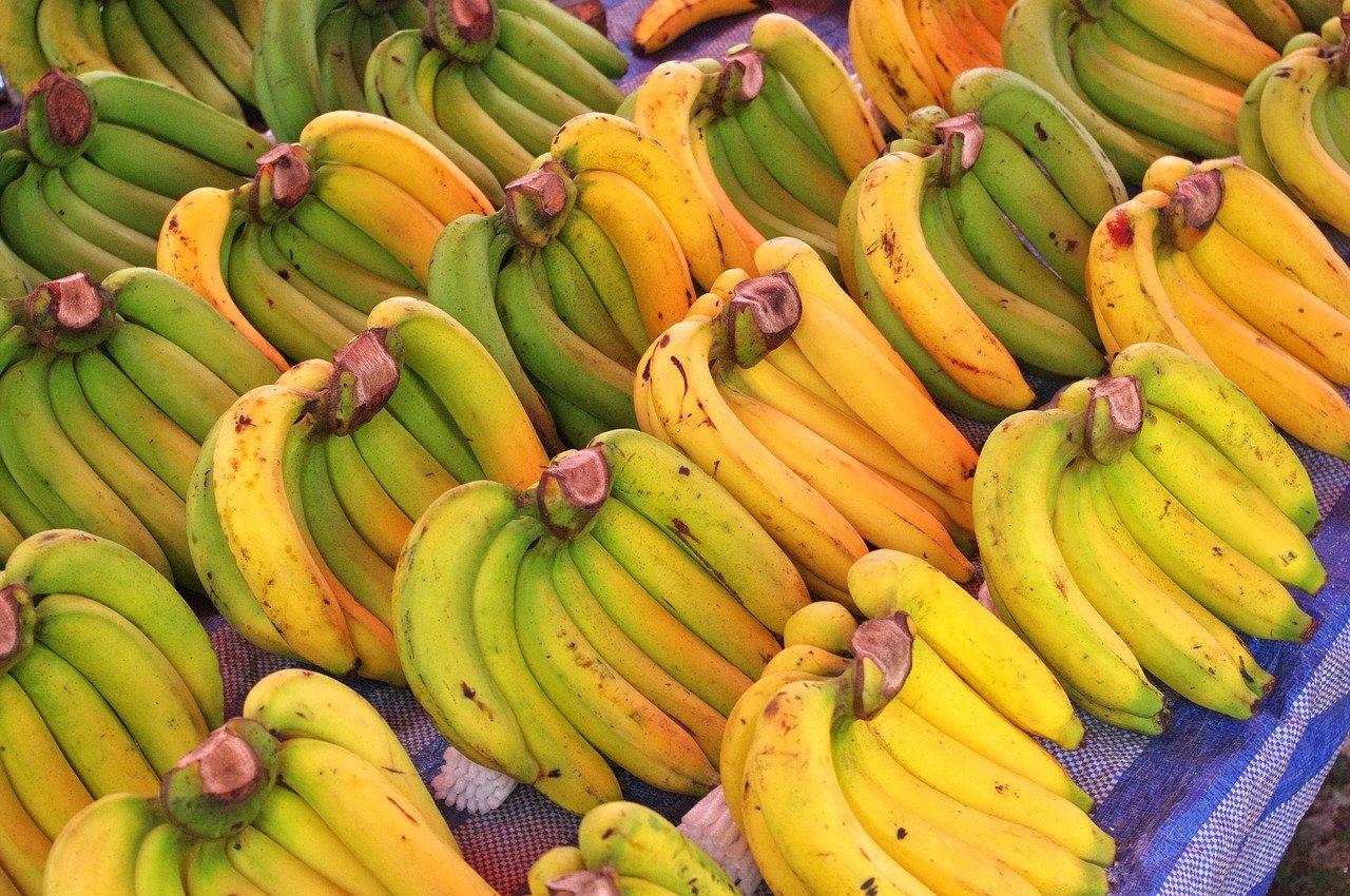 bananas-3945612_1280